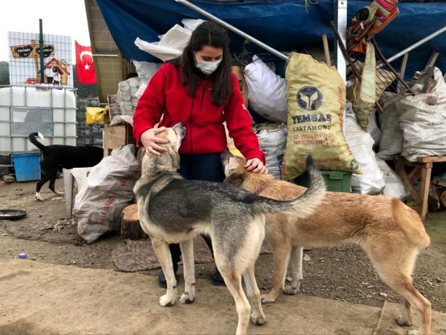 Üniversite öğrencileri engelli ve yavru köpekleri besledi